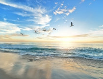 Eerste week van juni:        Yoga voor Vroege Vogels