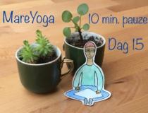 GRATIS 10 minuten yoga pauze: alle 20 dagen op een rij!